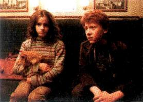 Ron&Hermione&her fake cat